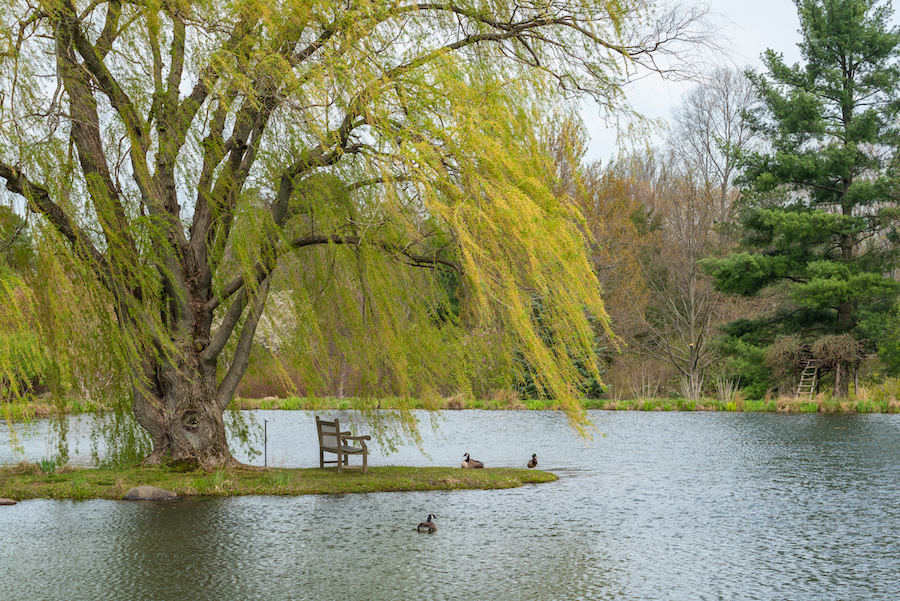 Holden Arboretum - wander with melissa